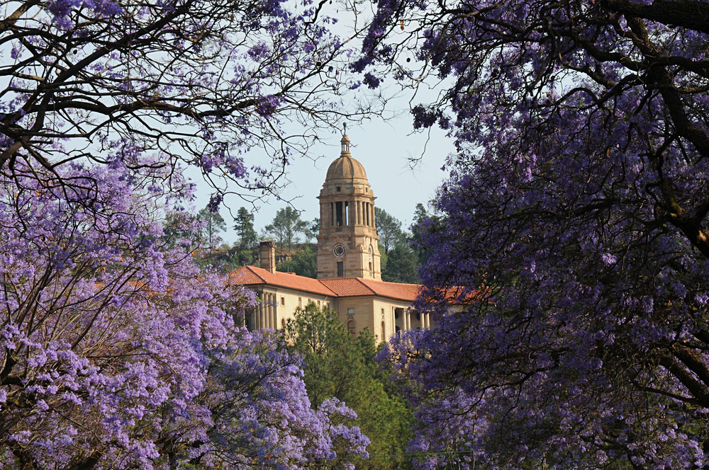 Union Building with Jacaranda Trees in Bloom, Pretoria, South Africa