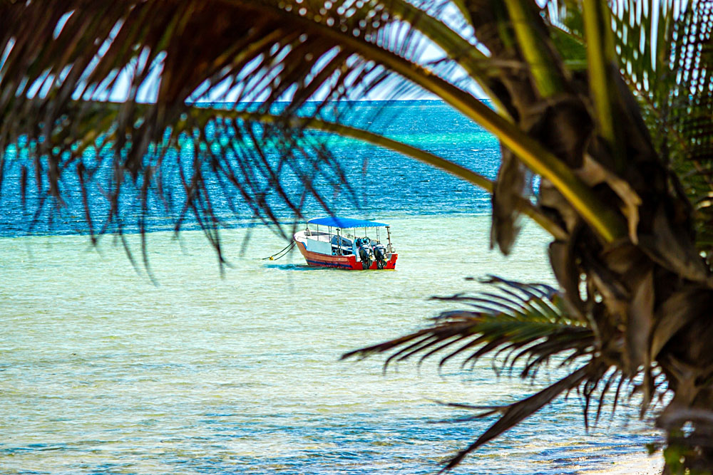Boat in the Waters of Mombasa, Kenya