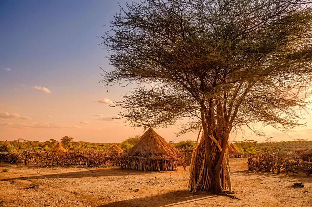 Huts in a Hamer Village at Sunset, Ethiopia