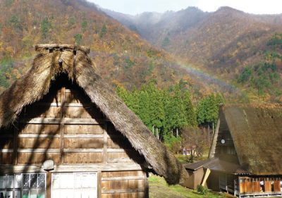 Shirakawago is famous for the traditional gassho-zukuri farmhouses, some of which are more than 250 years old.