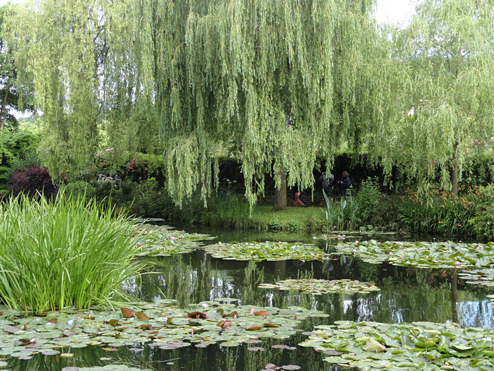 Steve Martin - Claude Monet's House and Gardens, Giverny, France