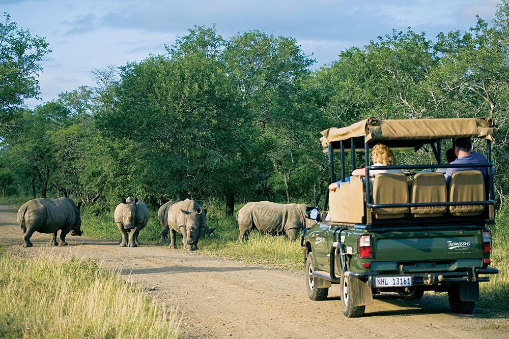 Game Viewing in Hluhluwe-Imfolozi National Park in Zululand, KwaZulu-Natal, South Africa