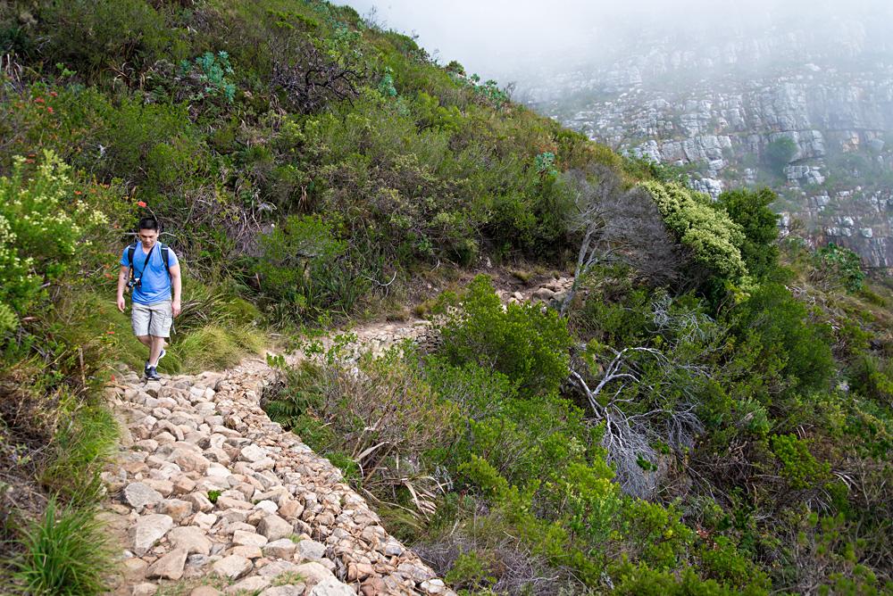 Hiker Climbing Table Mountain via Platteklip Gorge, Cape Town, South Africa