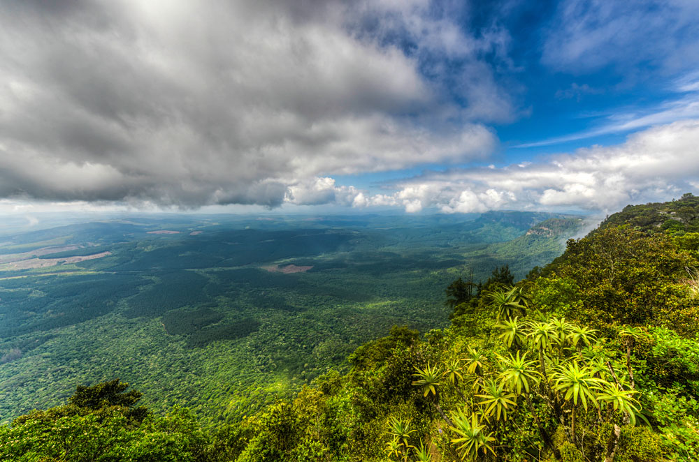 Panoramic Vista from God's Window, Blyde River Canyon, Mpumalanga, South Africa