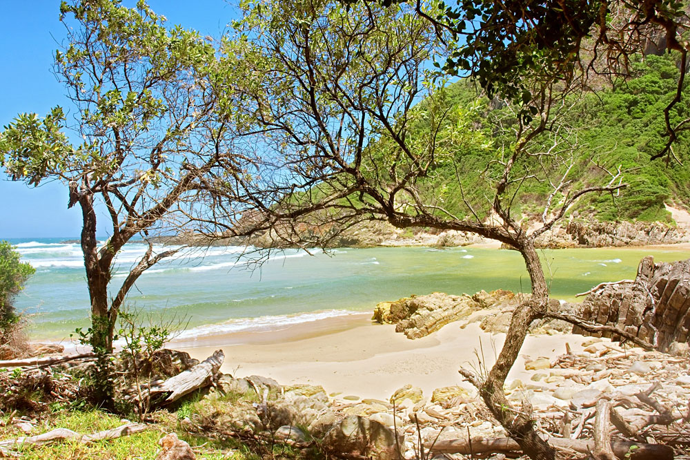 Tropical Sand Beach Shot on the Otter Trail in the Tsitsikamma National Park, Garden Route, Western Cape, South Africa