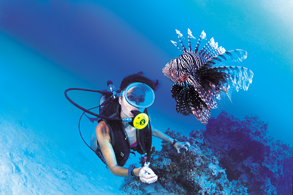 Spotting a Lionfish While Diving in Bora Bora, Tahiti