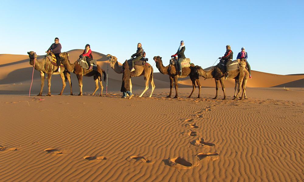 Sunrise Camel Ride in Merzouga, Morocco