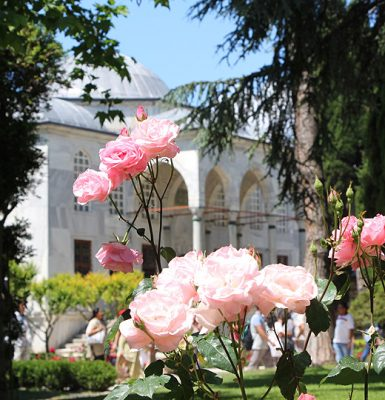 Topkapi Palace and Roses, Istanbul Turkey - Istanbul Vacation