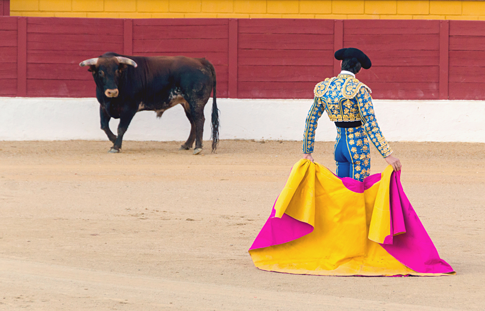 Matador Awaiting Bull in Bullring, Spain