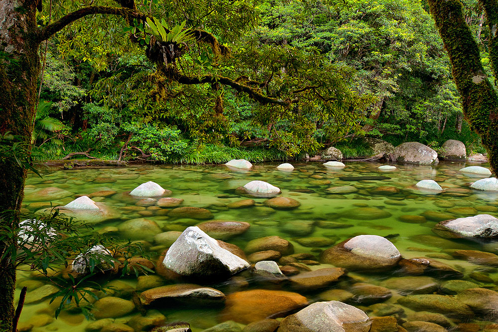 Mossman River, Daintree National Park, Queensland, Australia