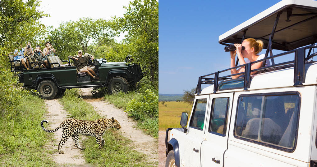 Different types of safari vehicles are available on your african safari