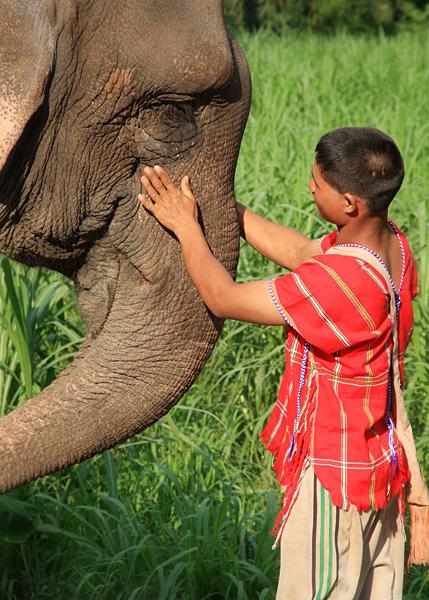 Elephant Hills Experience - Local Boy with Elephant, Khao Sak, Thailand