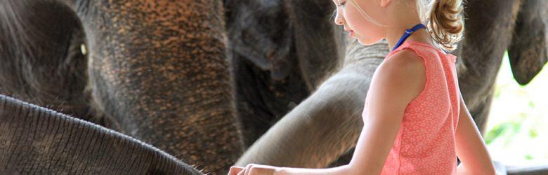 Elephant Hills Experience - Young Girl with Elephant, Khao Sak, Thailand