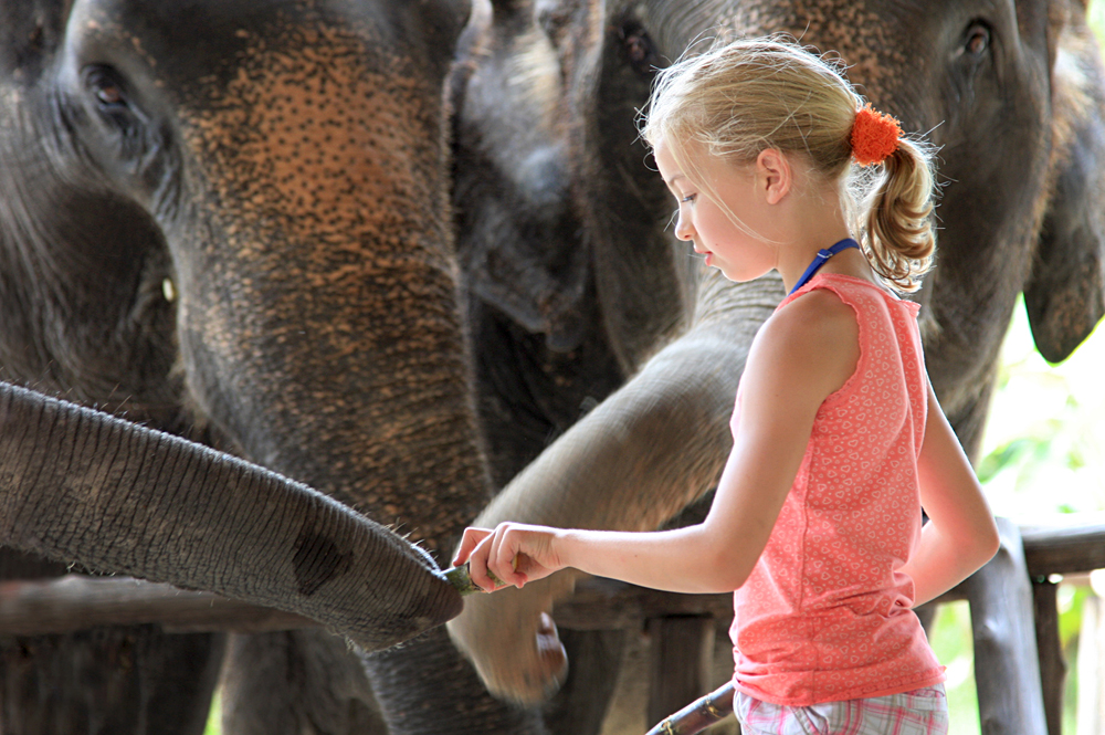Elephant Hills Experience - Young Girl with Elephant, Khao Sak, Thailand
