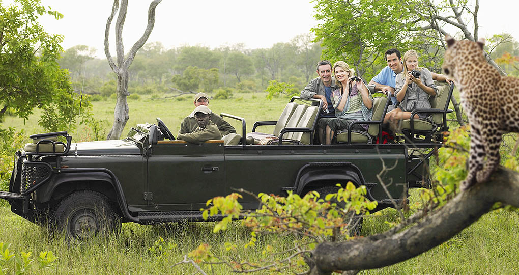 Tourists on a African safari viewing a cheetah from the safari vehicle