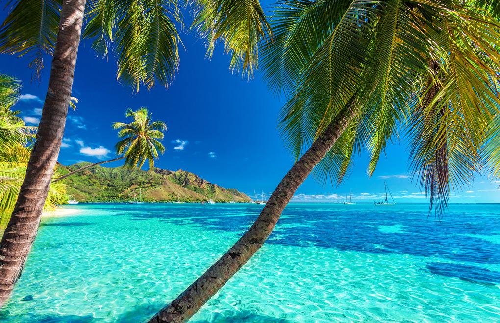 A Tahitian Beach.
