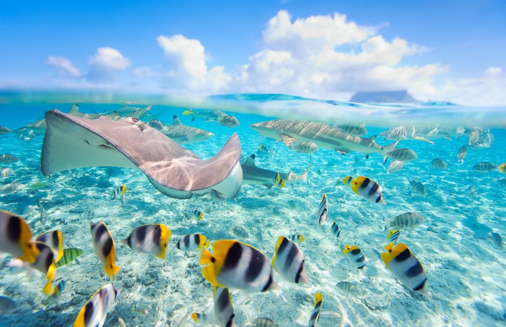 Bora Bora Lagoon.
