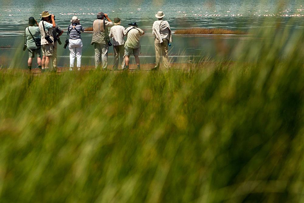 Senior Tourists on Photo Safari in Africa