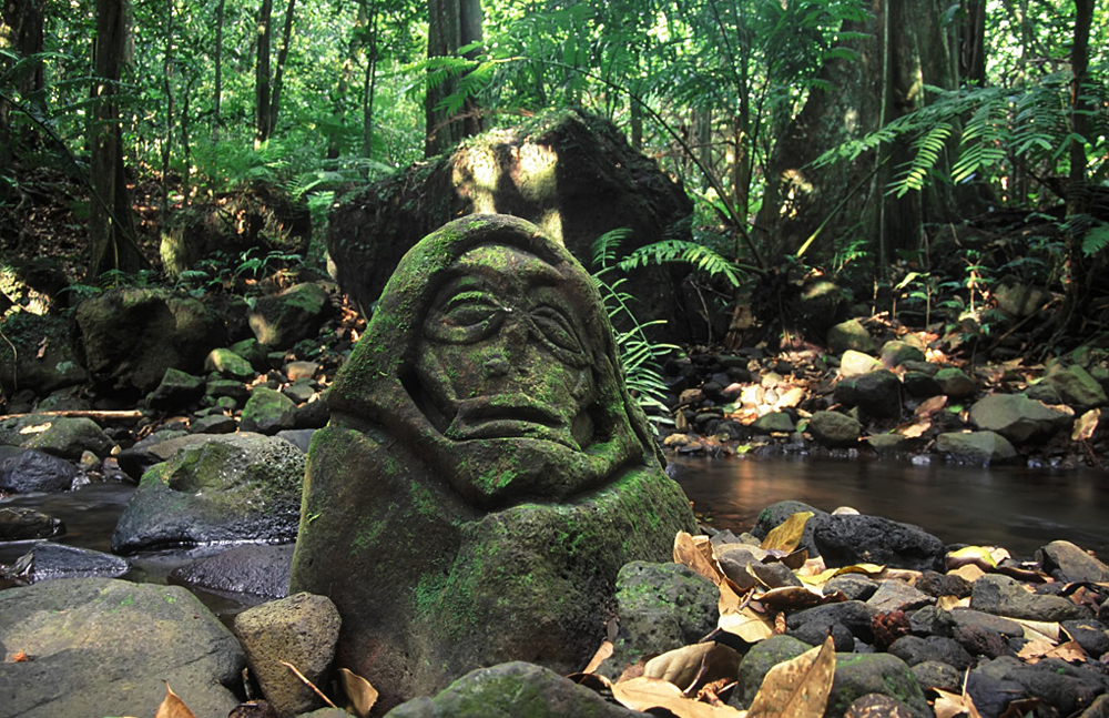 An Ancient Stone Carving in the Rainforest of Moorea, Tahiti (French Polynesia)