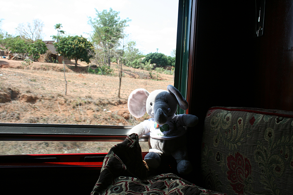 Thandi in her Gold Cabin on the Shongololo Express, Africa