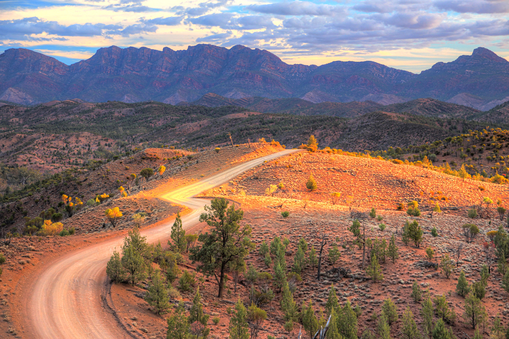 Flinders Ranges National Park, South Australia, Australia