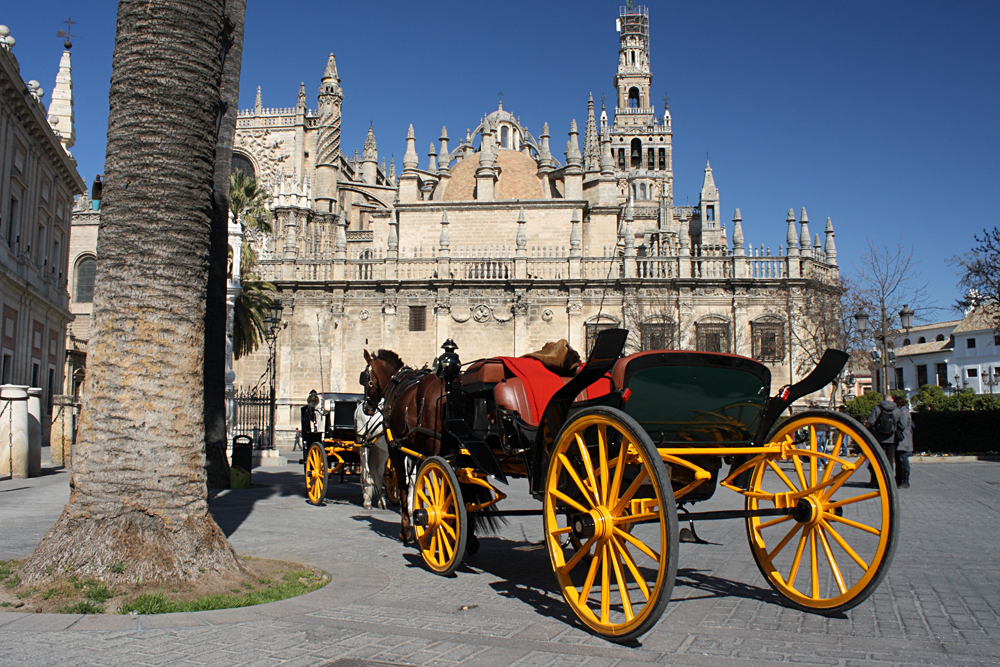 Horse Driven Coach in Front of Cathedral in Seville, Andalusia, Spain