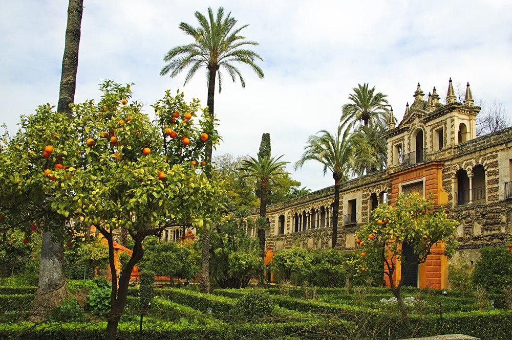 View of the Garden in the Alcazar of Seville, Andalusia, Spain