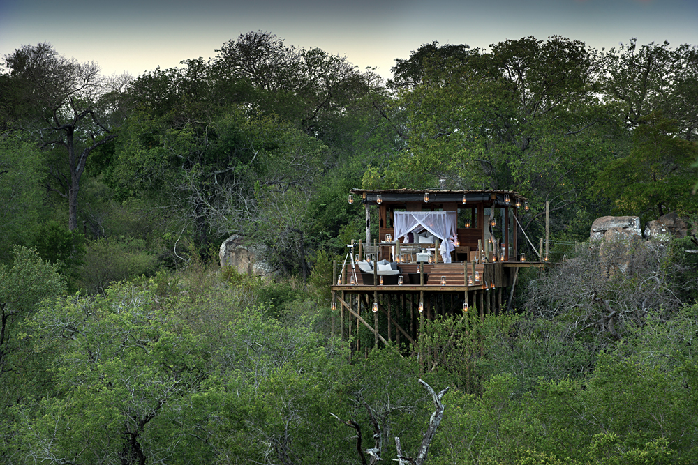 Sabi Sands Treehouse, Sabi Sands, South Africa