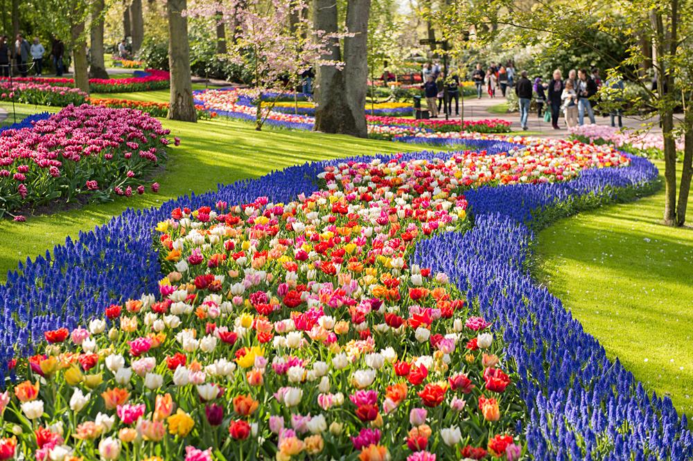 Keukenhof Park in Netherlands