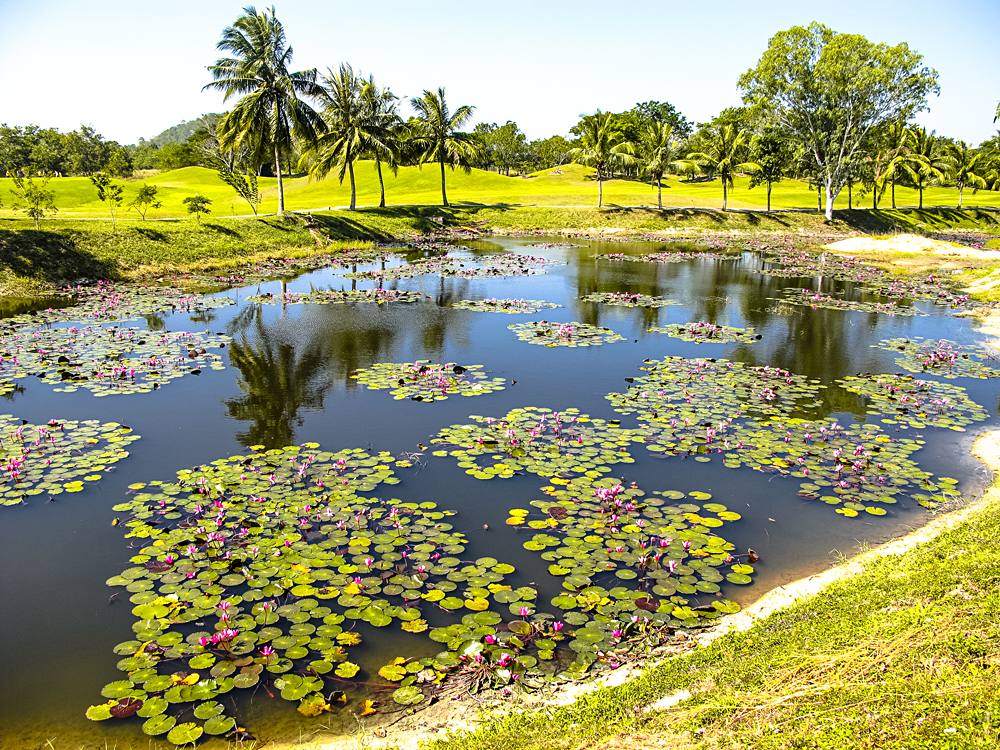 Beautiful lake in the middle of a scenic golf course near Pattaya, Thailand