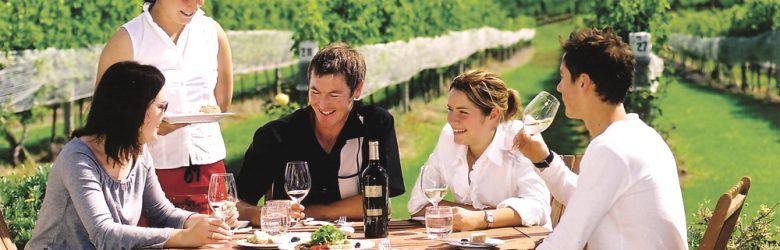 Wine Tasting Group in Marlborough, South Island, New Zealand