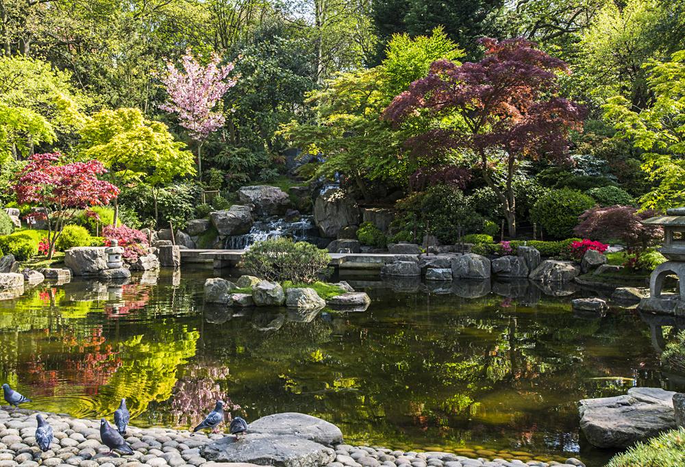 Kyoto Garden in Holland Park, London, England, UK (United Kingdom)