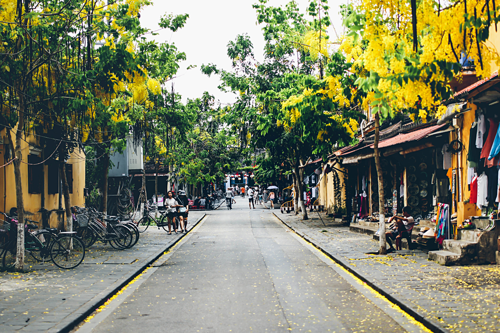 Michaela Trimble - Street in Hoi An, Vietnam