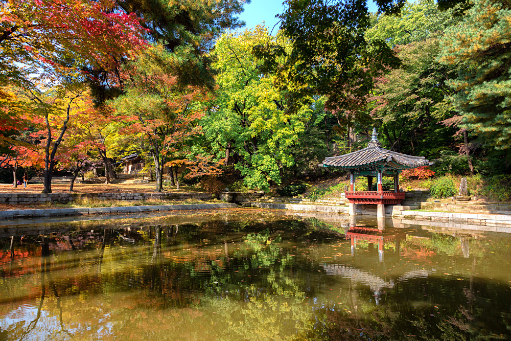 Biwon Private Garden at Changdeok Palace, Seoul, South Korea