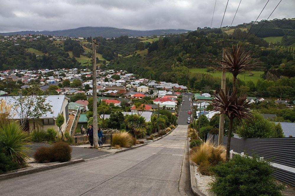 Baldwin Street, the steepest street in the world, in Dunedin, New Zealand