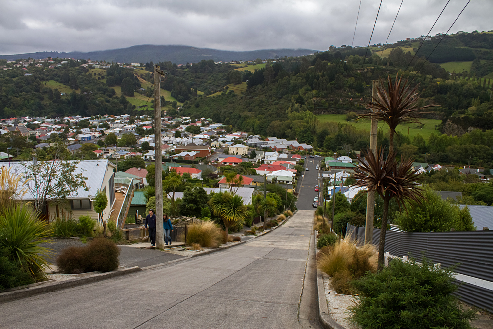 Baldwin Street, the steepest street in the world, in Dunedin, New Zealand
