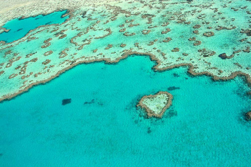 Heart Reef at Great Barrier Reef, Queensland, Australia