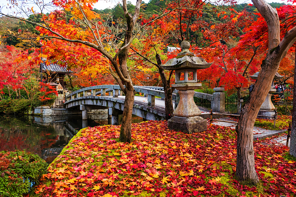 Eikando shrine and bridge with peak autumn foliage, Kyoto, Japan