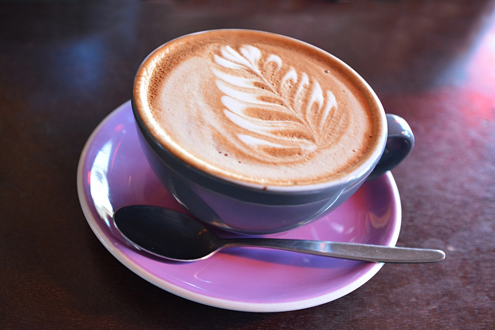Flat white coffee decorated with the New Zealand iconic symbol of the silver fern, New Zealand