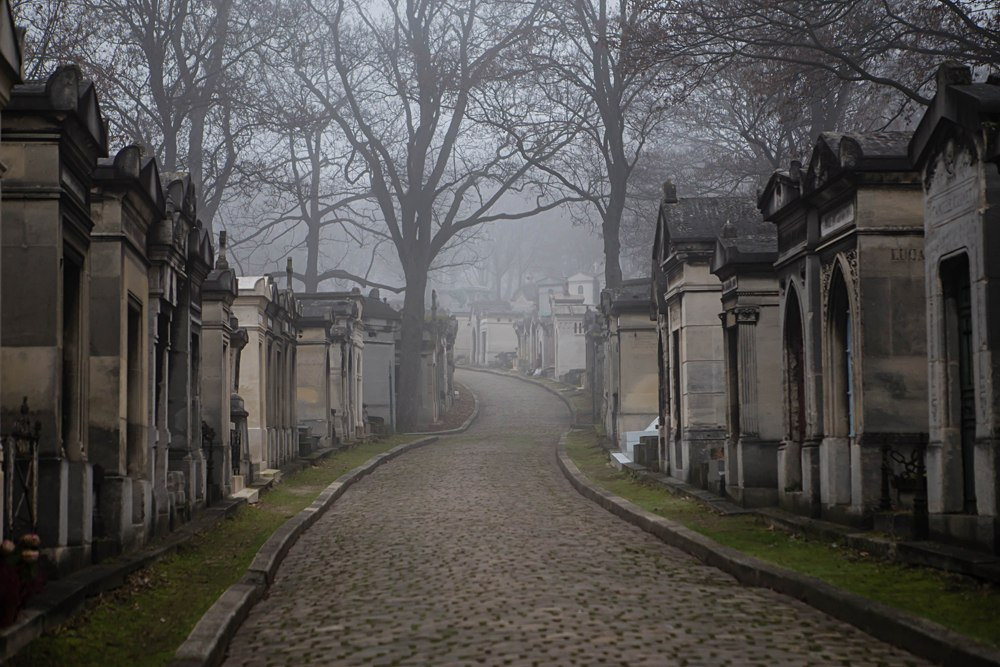 Morning Fog at Pere Lachaise Cemetery, Paris, France