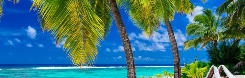 Beach beds under coconut palm trees with an ocean view, Rarotonga, Cook Islands