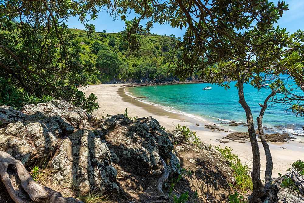 Palm Beach view, Waiheke Island, Hauraki Gulf, New Zealand