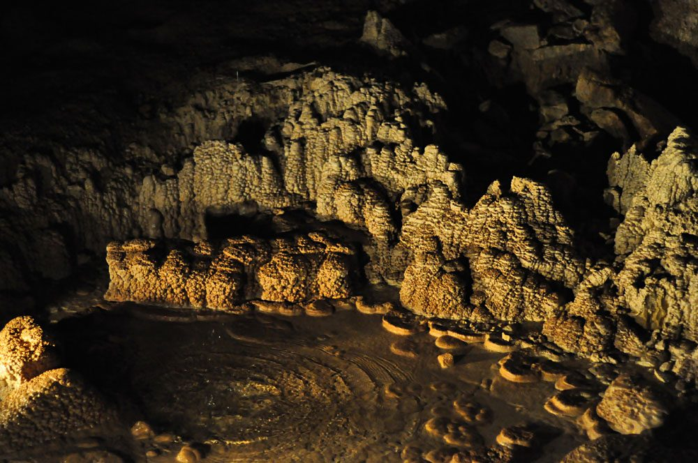 Stalagmites in the Waitomo Caves, North Island, New Zealand
