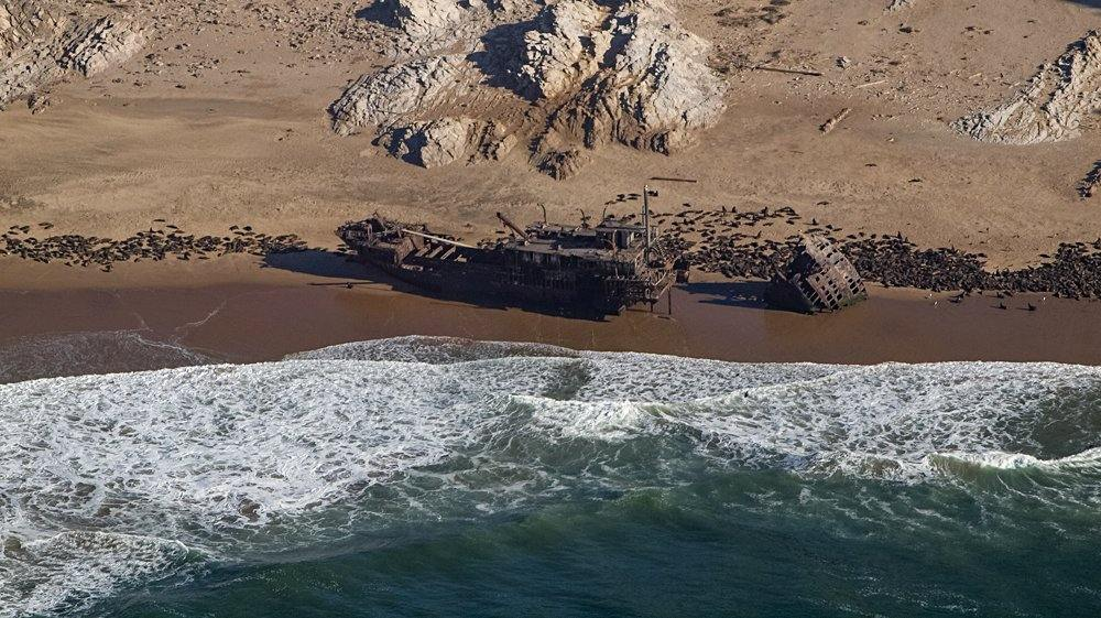 Aerial view of seals and a shipreck on Skeleton Coast, Namibia