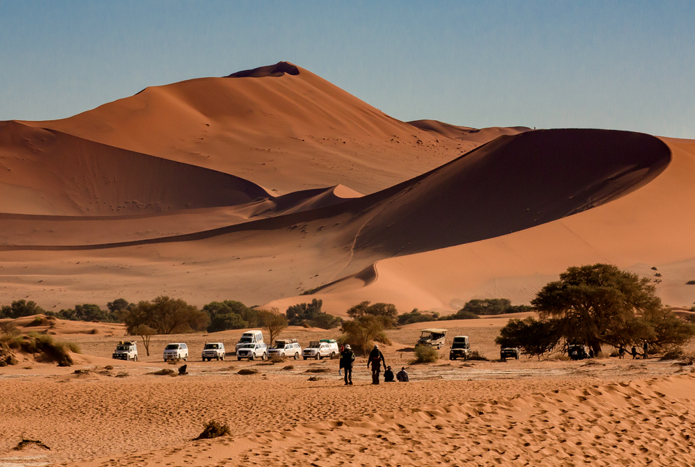 Namib desert, red dune Dune 45 and Big Mama at Sossusvlei, Namibia
