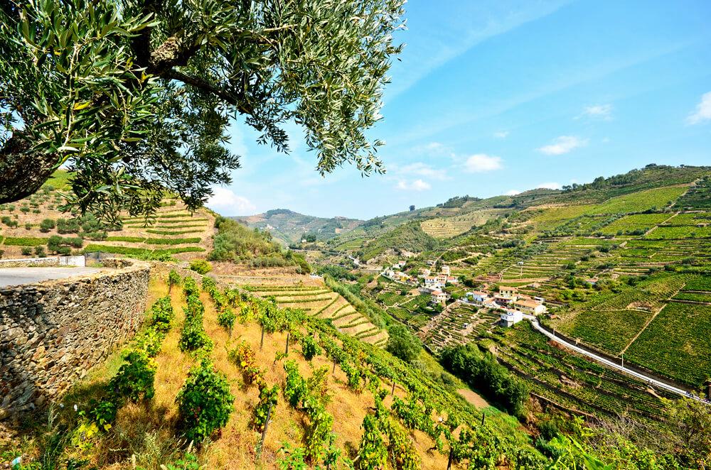 Douro Valley Vineyards and small village near Peso da Regua, Portugal