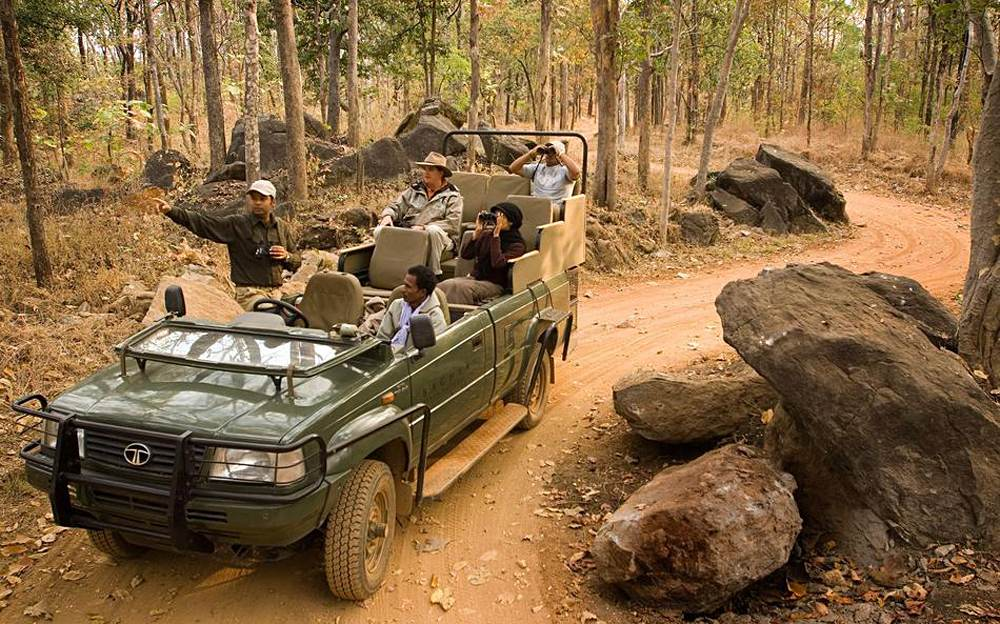 Mahua Kothi Lodge - Jeep Safari, Bandhavgarh National Park, India