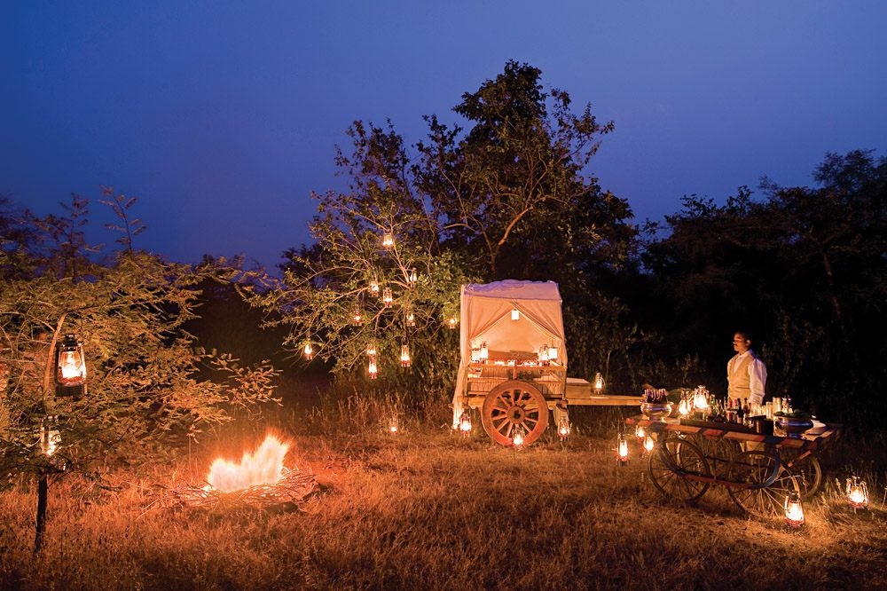 Pashan Garh Lodge - Bush dinner in Panna National Park, India