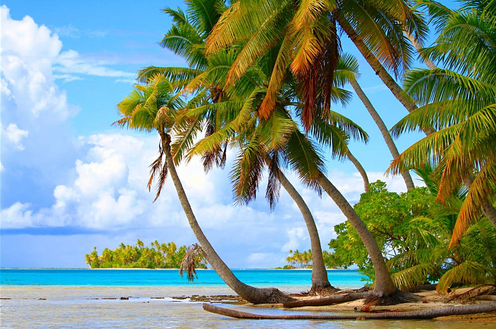 Rangiroa atoll, Tuamotu Islands, Tahiti (French Polynesia)
