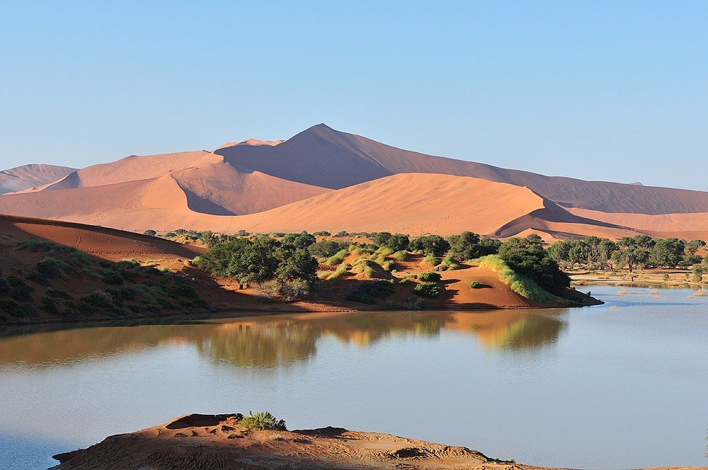 Sossusvlei in the Namib desert of Namibia with Big Daddy, reputedly the highest dune in the world, Namibia